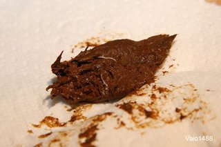 image of threadworms in poo